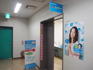 PA260081.JPG