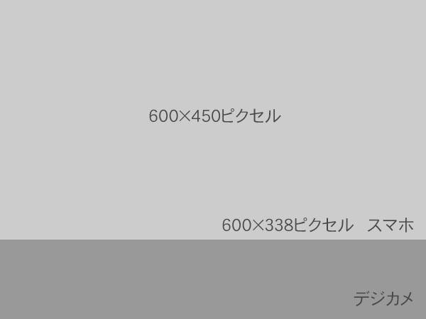 pic600